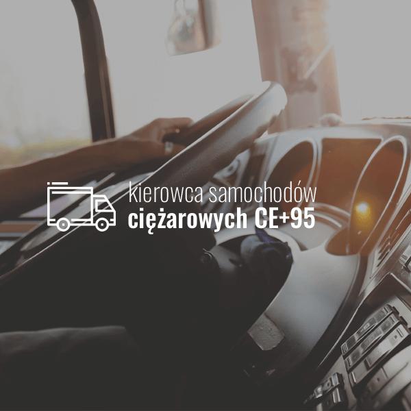 Kierowca samochodów ciężarowych CE+95