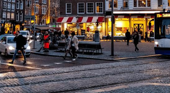 Życie Polaków w Holandii – czy warto rozważać emigrację?